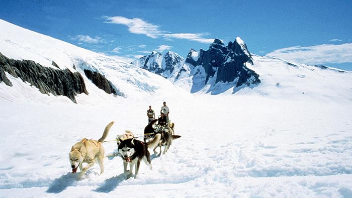 Três hóspedes da Disney Cruise Line andando de trenó puxado por cães em uma paisagem congelada